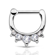 Septum clicker 1pc 316L Stainless Steel Septum Clicker Ring Hinged Clear CZ Nose Gauges Rings Hoop Body Nose Piercing Jewelry