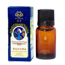 New Arrival Lavender Plant Fragrance Huile Essentielle Aromatherapie Essential Oils for Aromatherapy Health Massage O