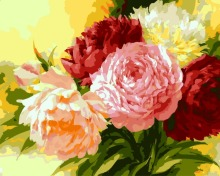 Unframed New arrival unique gift Digital Oil Painting On Canvas painting by numbers decorative picture 40*50-Flower Q1351