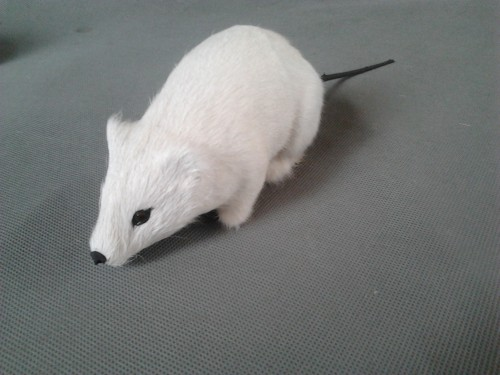 simulation white mouse model,polyethylene&amp;furs 25x7cm mouse,prop.funny decoration Xmas gift w4187<br><br>Aliexpress