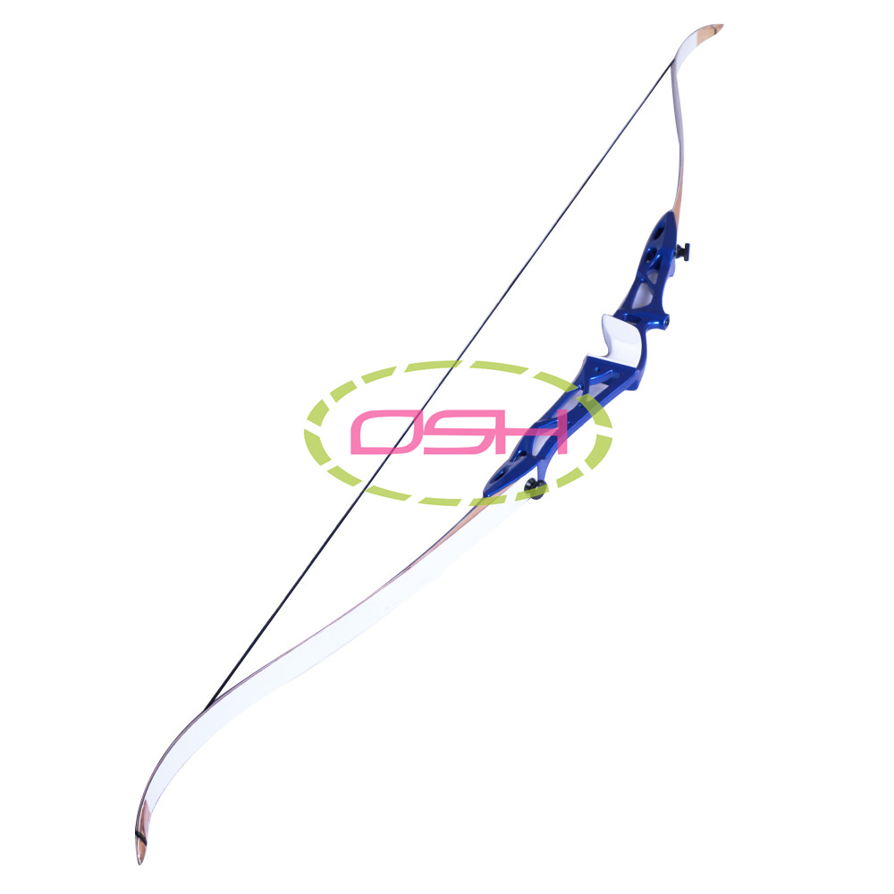 40lbs Archery Hunting Shooting Bow Take Down Bows and Arrows Right Hand for Adult Sling Shot Aluminium Bow Riser<br><br>Aliexpress