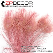 ZPDECOR 50pcs/lot 25-30cm(10-12inch) Hand Select Premium Quality Pink Dyed Peacock Feathers Wholesale For Ladies Wedding