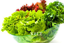 Lowest Price! 100 Seeds A Bag Organic Spring Lettuce Vegetable Seeds good taste, easy to grow,great salad choice,DIY Home vegeta(China)