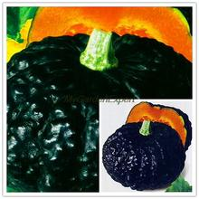 Hot Selling 8pcs/pack, Rare Japanese Pumpkin Seeds, Black Skin Pumpkin, Organic Non-GMO Vegetables Garden Plant Free Shipping