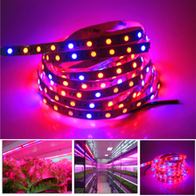 Full Spectrum DC 12V 0.5M 1M 2M 3M 4M 5M 60LEDS/M Plant Grow LED Strip light 3:1 4:1 5:1 Red:Blue Flower Plant Growth Tape Lamp(China)