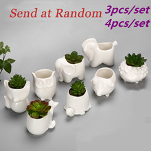 1 Set Small Animal Flower Pot Mini Porcelain Elephant Snail Tortoise Owl Garden Planter Ceramic Pot Pottery Bonsai Desktop Decro