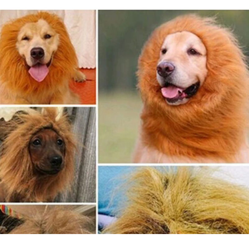 Cute Pet Cosplay Clothes Transfiguration Costume Lion Mane Winter Warm Wig Cat large Dog Party Decoration With Ear Pet Apparel5