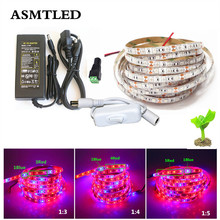 5050 LED Grow Lights DC 12V waterproof Growing LED Strip Plant Growth Light Set with Power Adapter and Switch 1M 2M 3M 4M 5M(China)
