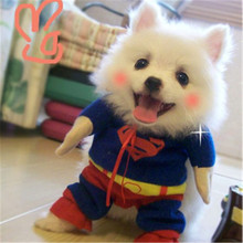 New Cute Pet Cat Dog Superman Dog Clothes Handsome Fashion Apparel Clothing for Pet XS-XL(China)