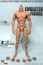 IN STOCK ZC Toys 1/6 Scale 2.0 Muscular Figure Body Similar to Hot Toys TTM19 2015 HOT SELL