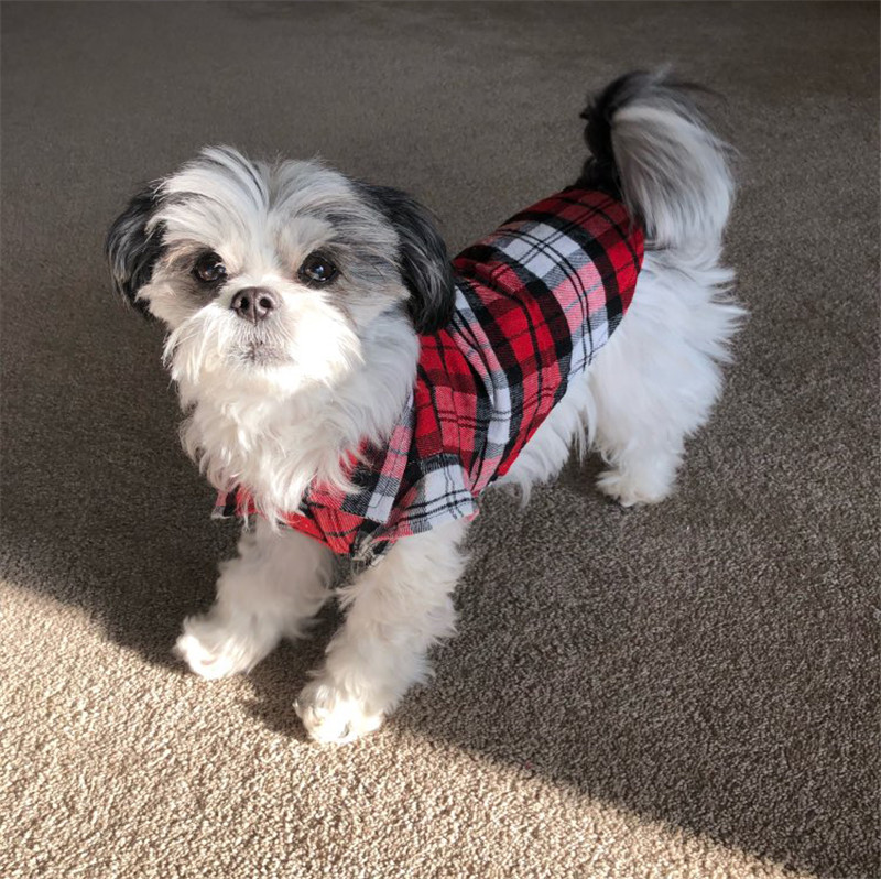 Pet Puppy Dog Clothes Summer Plaid Dog Shirt Coats Jackets Cat Grid Costumes for Small Medium Dogs Yorkies Chihuahua Clothes9