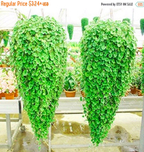 Dichondra seed , (Emerald Falls) , Multi - leafed grass seeds green Perennial plant Dichondra Repens Seeds 100 pcs/bag