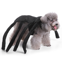 Halloween Pet Dog Costume Clothes Big Spider Costume Clothes For Dogs Chihuahua Clothing Pet Product Clothes For Roupa para 9Z35(China)
