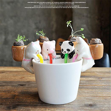 1Set Cute DIY Miniatures Radiation-resistant Office Desktop Mini-landscape Plant Home Decoration Accessories Lucky Gifts