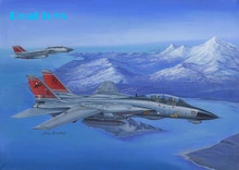 Hobby Boss 1/48 80368 F-14D Tomcat plastic model kit