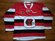 Custom  Ottawa 67s your name and number Stitched Hockey Jersey or Blank Jersey