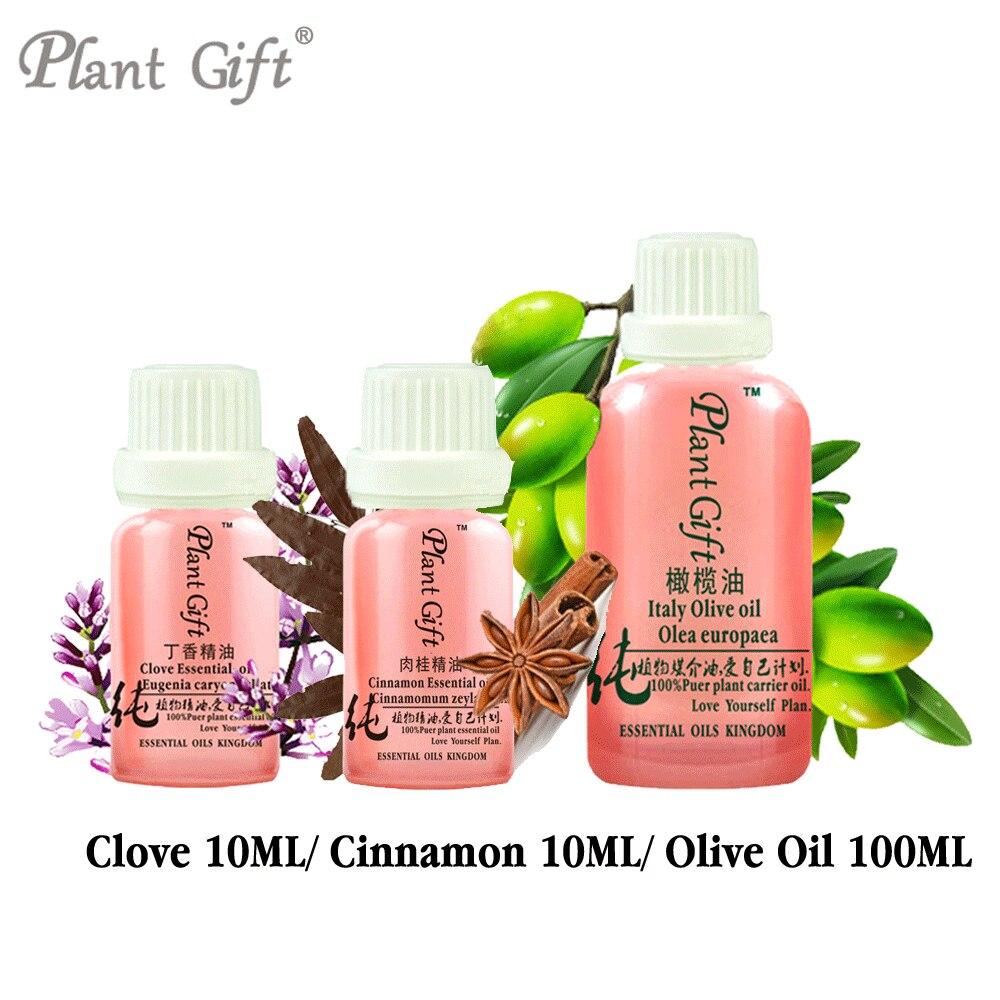 100% Pure Plant Essential Oils Sri Lanka Clove / Cinnamon / Olive Oil Treatment Of Headache Toothache Halitosis Skin Care SET<br>