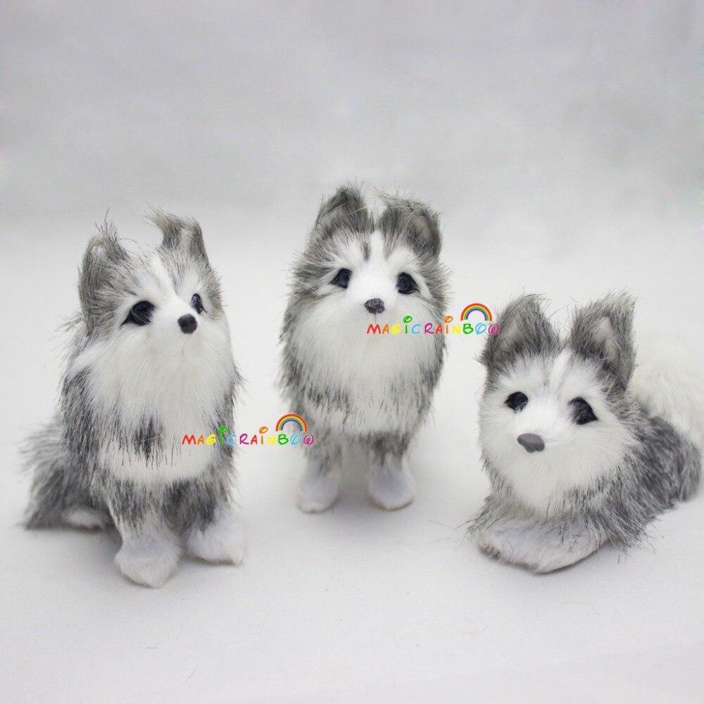 M_Husky dog (14)