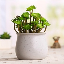 Hot Home Office Gypsophila Multicolored Ceramic Pots Mini Flowerpot Ceramic Flowerpot Garden Nursery Pots