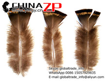 CHINAZP Factory Expoting 50pcs/lot 8-10 Inch Natural Wild Turkey T-Base Plumage Body Feathers