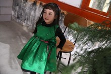 2017  New Arrival Kids Clothes Girl Dress Costume Princess Dresses Children Clothing wholesaler  Ready