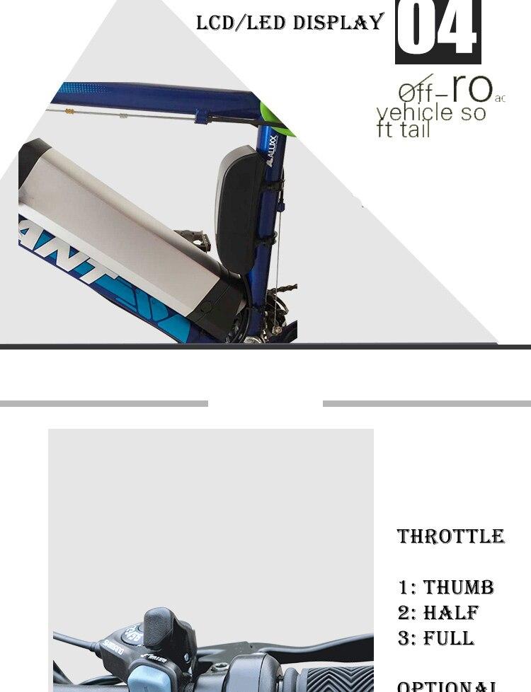electric bike kit (5)