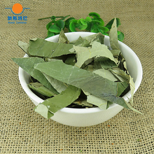 Free shipping Chinese herb tea organic dried slimming lotus leaf tea