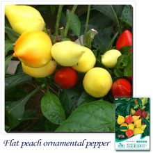 Buy 2 Get 1!(Can accumulate ) 1 Pack 20 Seed Peach Ornamental Pepper Vegetable B079(China)