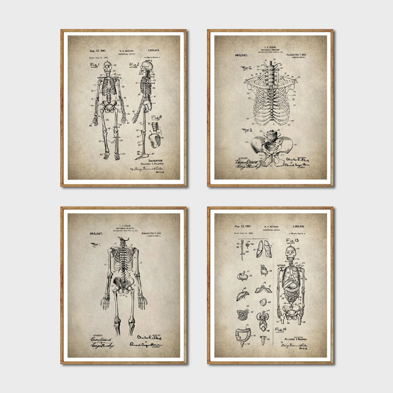 Uterus,anatomical prints,Anatomy Vintage prints,Female Reproductive System,womb