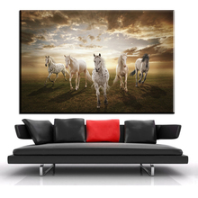 xdr297 Animal Painting Horses Frame Canvas Prints Picture Melamine Sponge Board Running Horse Oil Painting Wall Art(China)