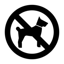 12*12CM No Pets Dogs Allowed Warning Sign Car Sticker Window Glass Vinyl Decal Black/Sliver C6-1745