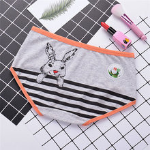 girl underpant fashion underwear comfort Lingerie Women's sexy cotton Panties printed Little rabbit briefs cute