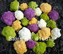 400 Rainbow CAULIFLOWER SEEDS  Four Colors* NICE TASTY CAPE BROCCOLI * LOW IN FAT, BUT HIGH IN FIBER,Vegetable Seed For Sowing