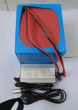 battery+Charger: 36V 15Ah Rechargebale Lifepo4 Electric Vehicle Battery Pack with BMS