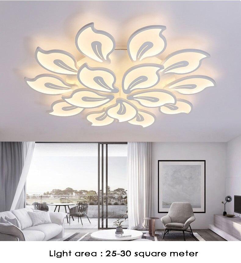 Ceiling-light14