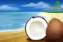 Home decoration halved coconut on the sand beach summer time Silk Fabric Poster Print 199FJ