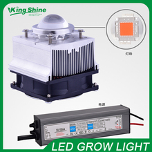 2015 New design 30W DIY LED Grow KIT,30W full spectrum led +30w led driver +heat sink, fan and driver + lens for indoor growing