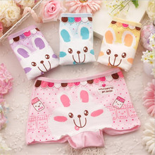 Buy 5pcs/lot Cute Rabbit Panties Girl Cotton Children's Underwear Girls Nice Baby Girl Clothing Boxer Shorts Girls Knickers