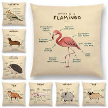Hot Sale Funny Animals Anatomy Flamingo Fox Dachshund Giraffe Hedgehog Lion Pug Squirrel Cushion Cover Sofa Throw Pillow Case(China)