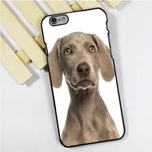 Fit for iPhone 4 4s 5 5s 5c se 6 6s 7 plus ipod touch 4 5 6 back skins phone case cover Weimaraner Puppy Dog