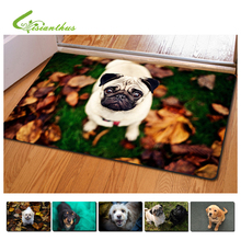 40*60cm Carpet 3D Printing Door Mat Cute Dog Bath Mat Non-Slip Bathroom Kitchen Carpets Living Room Brand Rug Kids Room Carpet