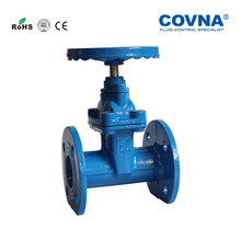 DN65 2-1/2 inch Water Cast iron soft seal flange Gate Valve(China)