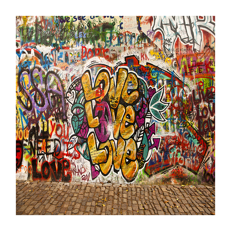 Graffiti wall Thin Vinyl Photo Backdrops Kids Photography Background   10X10ft  F-2142<br><br>Aliexpress