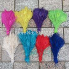 EMS Free shipping dyed peacock feather 800pcs/lot length 25- 30 cm 10-12 inch beautiful DIY peacock feather plumage decoration