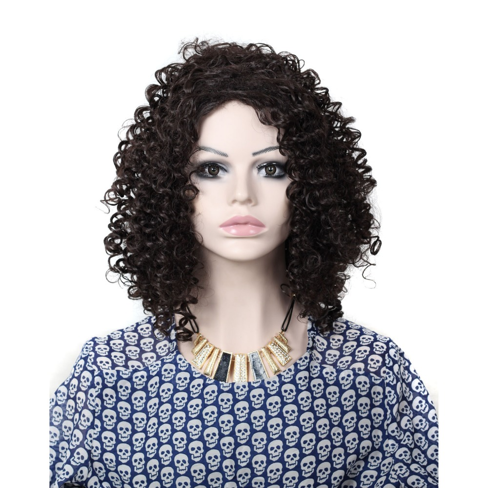 Hot #2 #12 Color Afro Kinky Curly Hair Heat Resistant Synthetic Wigs for Black Women High Quality Synthetic Kinky Curly Wig<br><br>Aliexpress