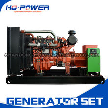 200kw/250kva natural gas generator prices in pakistan(China)