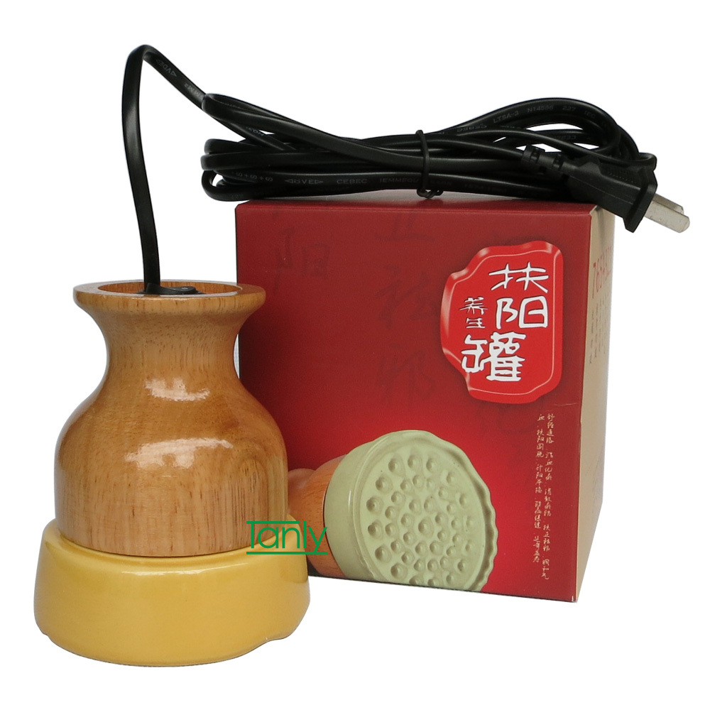 Good Quality! Wholesale &amp; Retail 220V scraping  warm instrument Electric moxibustion<br>