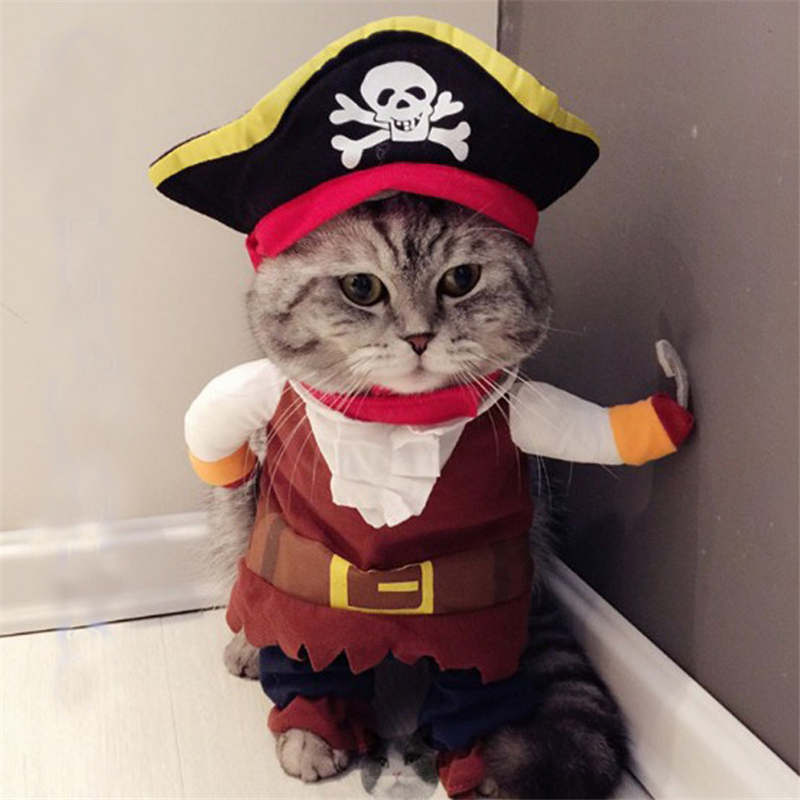 Pet Clothes Pirate Dog Cat Costume Best Offer Reviews
