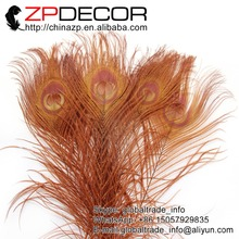 ZPDECOR 50pcs/lot 25-30cm(12-14inch) Premium Quality Hand Select Brown Peacock Feather for Wedding Decoration Accessories(China)