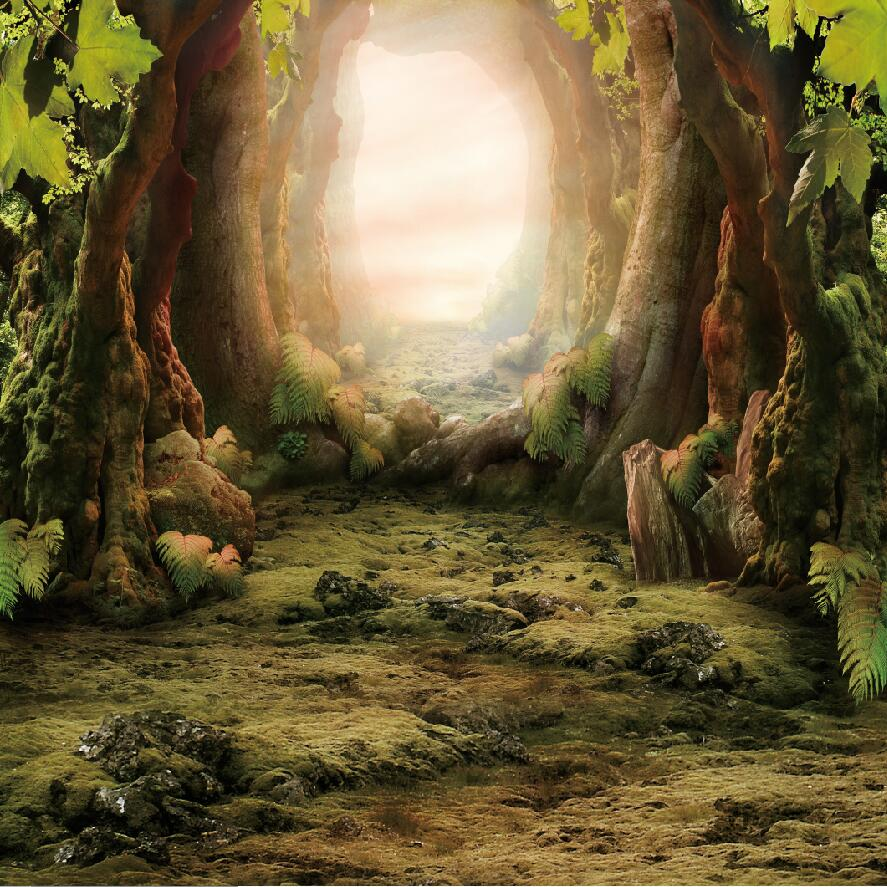8X8FT(250*250cm) Fairy Tale Forest Photography Backdrop for Newborn Baby Photos D-8270<br>